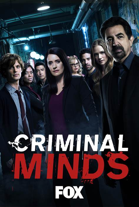 CRIMINAL MINDS 13